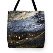 Happy Florida Gator Tote Bag