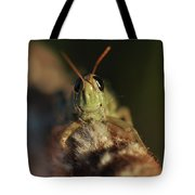 Happy Grasshopper On Cattail Tote Bag