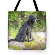 Happy Happy Dog At Dawn Tote Bag