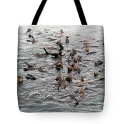 Happy Harbour Seals Tote Bag
