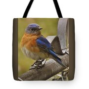 Happy New Year Male Bluebird Tote Bag