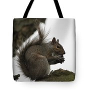 Happy Squirrel Tote Bag