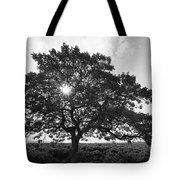 Hapuna Beach Park Tote Bag