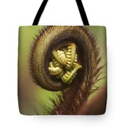 Hapuu Fern Frond Shoot Tote Bag