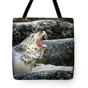 Harbor Seal Tote Bag