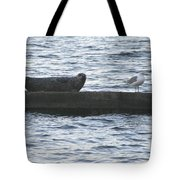 Harbor Seal Hangin With A Friend Tote Bag