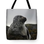 Harbor Seal In Stormy Weather Tote Bag