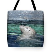 Harbor Seal Poking His Head Out Of The Water Tote Bag