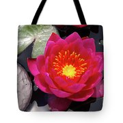 Hardy  Day Water Lily Tote Bag