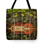 Harold Parker State Park In The Fall Tote Bag