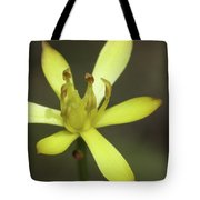 Harper's Beauty #2 Tote Bag