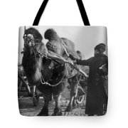 Harriet Chalmers Adams Tote Bag