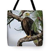 Harriet Front Pine  Tote Bag