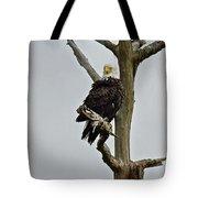 Harriet Look Tote Bag