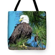 Harriet One More Look  Tote Bag