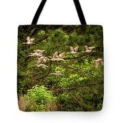 Harris Neck Ibis In Flight Tote Bag