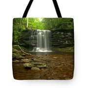 Harrison Wrights Falls In The Forest Tote Bag