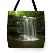 Harrison Wrights Forest Falls Tote Bag