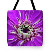 Harry Curly And More Tote Bag