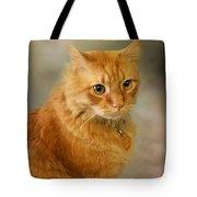 Harry Tote Bag