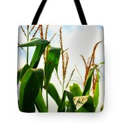 Harvest Corn Stalks Tote Bag