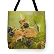 Harvest Mice On Blackberry Tote Bag