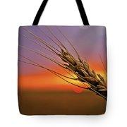 Harvest Sunset Tote Bag