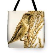Harvest Time Iv Tote Bag