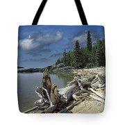 Hattie's Bay In Pukaskwa National Park Ontario Tote Bag
