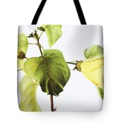 Hau Plant Art Tote Bag