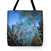 Haunted Trees Tote Bag