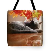 Have A Restful Thanksgiving Tote Bag