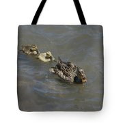Having Your Duckies In A Row  Tote Bag