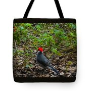 Hawaii Birds 5 Tote Bag