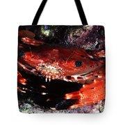 Hawaii Swimming Crab Tote Bag