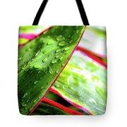 Hawaii Ti Leaves Morning Shower 559 Tote Bag