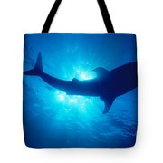 Hawaii, Whale Shark Tote Bag