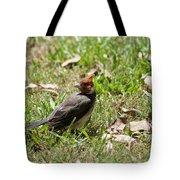 Hawaiian Cardnal Tote Bag