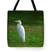Hawaiian Cattle Egret Tote Bag