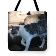 Hawaiian Feral Cat 2 Tote Bag
