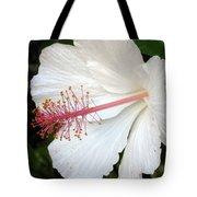 Hawaiian Hibiscus 2 Photograph Tote Bag