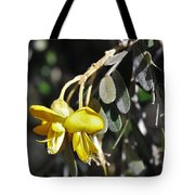 Hawaiian Mamane Tote Bag