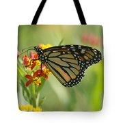 Hawaiian Monarch 1 Tote Bag