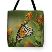 Hawaiian Monarch 2 Tote Bag