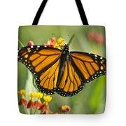 Hawaiian Monarch 3 Tote Bag