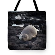 Hawaiian Monk Seal Tote Bag