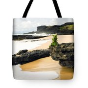 Hawaiian Offering On Beach Tote Bag