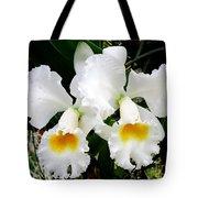 Hawaiian Orchid 35 Tote Bag
