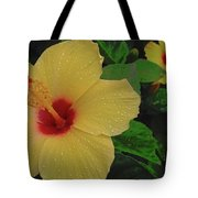 Hawaiian Sunrise Tote Bag
