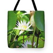 Hawiian Water Lily 01 - Kauai, Hawaii Tote Bag